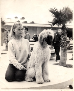Colleen Graham 1960s Venice Pavilion